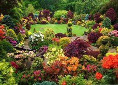 magnifique #jardin_naturel