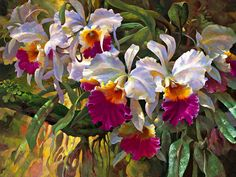 Cattleya Magnificent - Leon Roulette - oil and mixed media on canvas