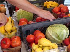 Alimentos orgânicos têm mais minerais do que os alimentos convencionais!
