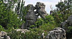 Bois de Païolive : étonnante forêt de roches calcaires pétrifiées mélangées aux chênes http://sco.lt/... @ScoopIt.co.co.co #tourisme #ardeche