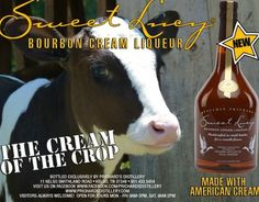 An advertisement for our Sweet Lucy Bourbon Cream Liqueur.