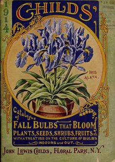 cover with an illustration of 'Iris Alata' from 'Childs' 1914 Catalogue of Fall Bulbs That Bloom.Front cover with an illustration of 'Iris Alata' from 'Childs' 1914 Catalogue of Fall Bulbs That Bloom. Vintage Diy, Images Vintage, Vintage Farm, Vintage Labels, Vintage Ephemera, Vintage Paper, Vintage Postcards, Etiquette Vintage, Vintage Seed Packets