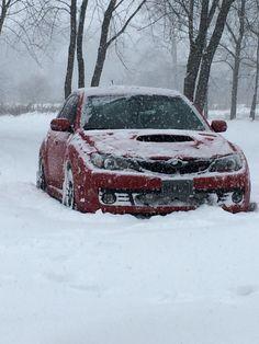 Fresh powder fun! Subaru, Powder, Fresh, Vehicles, Car, Automobile, Face Powder, Rolling Stock, Cars