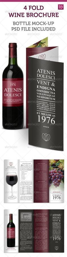 Brochure for winery or wine company mailers brochures for Accordion brochure template