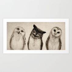 Buy The Owl's 3 by Isaiah K. Stephens as a high quality Art Print. Worldwide shipping available at Society6.com. Just one of millions of products…