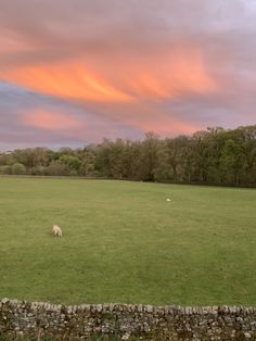 Sunset clouds over Williamston Barns and the South Tyne Valley. Luxury Holiday Cottages, Holiday Accommodation, Luxury Holidays, Barns, Wilderness, Natural Beauty, Golf Courses, England, Clouds