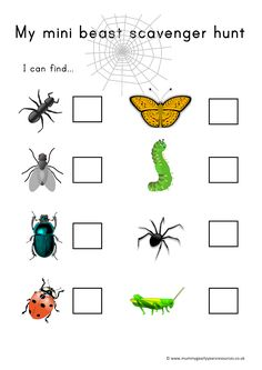 Mummy G early years resources: Mini beast scavenger hunt Forest School Activities, Eyfs Activities, Nursery Activities, Nature Activities, Spring Activities, Preschool Activities, Science Nature, Outdoor Education, Outdoor Learning