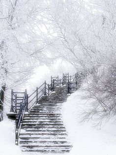Frost*   *Frost: Frost, like snow, is the result of depositi…   Flickr