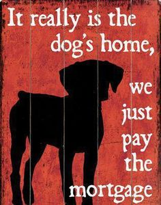 'Share' if your home revolves around your pooch!