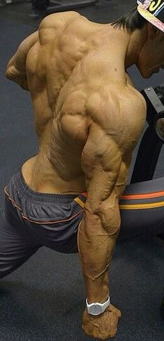 Muscle reference for the arm back 3/4 view.
