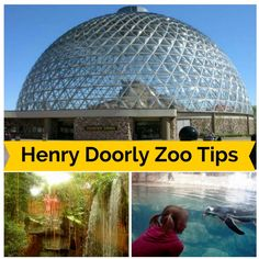 Tips for visiting Omaha's Henry Doorly Zoo - top rated zoo!