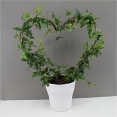 Green Ivy Heart with Ceramic Planter