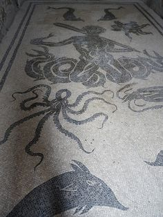 mosaic women's bath house floor in Herculaneum by d0gwalker, via Flickr