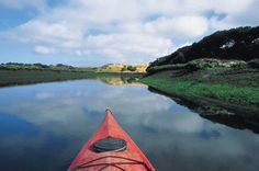 Kayaking Elkhorn Slough 2008 but it didn't look like this!  our day was gray and rainy