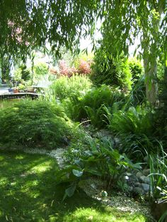 Latest Totally Free Shade Garden landscaping Popular In case your yard is full of large shade trees, it's already difficult growing sun-loving plants, Garden Design, Planting Flowers, Natural Garden, Cottage Garden, Garden Paths, Front Yard Landscaping, Shade Garden, Garden Images, Shade Trees