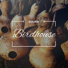 Birdhouse - Gourd