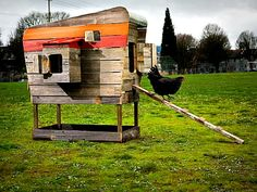 I love this chicken coop