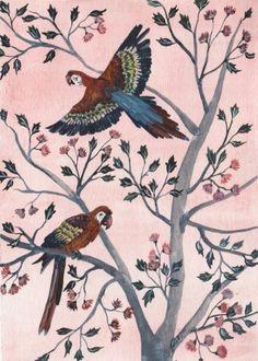 Illustrations by Sonia Cavallini