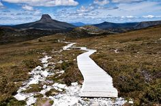 Path to Cradle Mountain base My Dream Came True, Beautiful Places To Visit, Tasmania, Wilderness, Paths, Trips, Mountain, Gems, Base