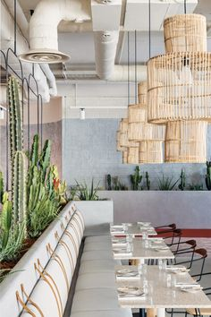 In another nod to hot, arid landscapes, huge planters filled with different cacti and succulents have been added throughout the hotel's reception and used to separate its cocktail bar from the restaurant. Interior Plants, Interior Design, Sunny California, Hotel Reception, Property Design, Wooden Stairs, Hotel Interiors, London Hotels, Commercial Interiors