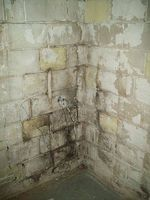Clean Basement Mold in a Cinder Block Foundation