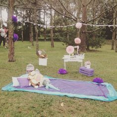 Picnick baby shower