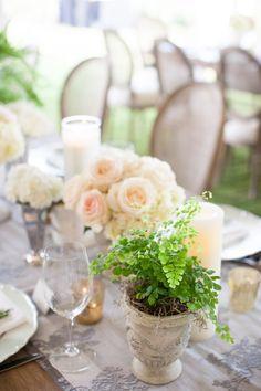 #potted-plants, #centerpiece  Photography: Birds of a Feather - birdsofafeatherphoto.com/ Planning + Design: Amorology - amorologyweddings.com Floral Design: Twigg Botanicals - twiggbotanicals.com  Read More: http://www.stylemepretty.com/2013/07/15/rancho-santa-fe-wedding-from-birds-of-a-feather-amorology/