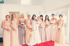 Grecial style goddess bridesmaids dresses in pastel peach and blush Bridesmaid Dresses, Wedding Dresses, Bridesmaids, Pretty Pastel, Wedding Couples, Couple Photography, Perfect Wedding, Peach, Pastels