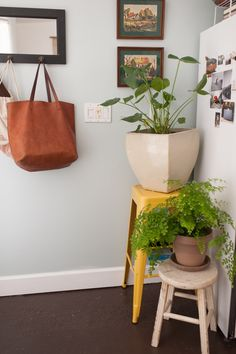 """Inside S.F.'s Teensiest Apartments — Major Inspo Ahead! #refinery29  http://www.refinery29.com/2013/06/48859/cool-small-apartments#slide-16  Is there anything you don't have room for that you wish you could bring in?  """"More plants and more art!"""" What's one thing you are always re-stocking?  """"Mrs. Meyer's cleaning products. I'm a bit obsessed, and use them to clean everything."""" What is one thing you ar..."""