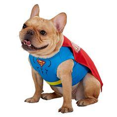 DC Comics Superman Costume | Costumes | PetSmart