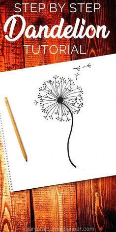 How to draw a dandelion: Easy dandelion drawing step by step tutorial Find out how to draw a dandelion. We love flower doodles and the dandelion doodle is a simple drawing to try. Simple Flower Drawing, Easy Flower Drawings, Flower Drawing Tutorials, Drawing Tips, Flower Art, Simple Flowers To Draw, Drawing Flowers, Bullet Journal Themes, Bullet Journal Art