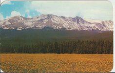 US-4087937 Millenium, Mt. Massive 14,418 F. Sawatch Range , Leadville CO