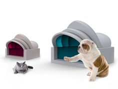 PET HOUSE by AntonioLanzillo. Check it out on Desall.