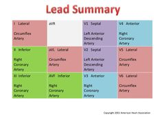 Coronary Arteries & 12-Leads. Some things you just gotta memorize.