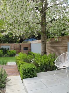 contemporary Spring garden | euphorbia, Buxus clipped cubes | horizontal slated fencing and grey stone