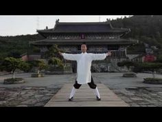 Taiyi Swimming Dragon - Lu Jian - YouTube