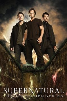 Shadowhunters Signed Art Silk Poster 12x18 24x36