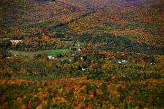 Head east to the Berkshire Mountains in Massachusetts, another region of bucolic scenery, quaint towns and vibrant arts scenes. If you head east out of Hudson on Rte 23, you eventually come to Hillsdale and the Catamount Aerial Adventure Park. This is no ordinary zip line or ropes course but easily the most exciting and challenging one we've tried. No matter your strength or your capacity for tolerating heights, there's a route earmarked for you (plus there's skiing in the winter).