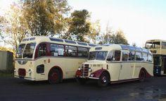34 Best School Bus Gypsies Images Rv Camping Rv Bus