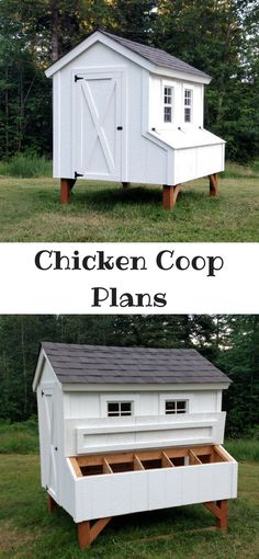 Beautiful and functional Chicken Coop for your urban back yard or your modern homestead. Instant downloadable PDF plans. #affiliate #chickens #chickencoop