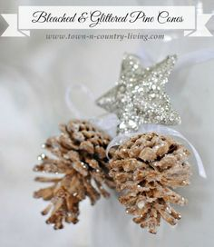 Bleached and Glittered Pine Cones