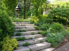 Stone steps and landscaping