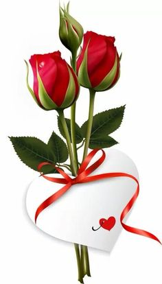 Good Morning Wishes Quotes - Good Morning (Two Red Roses Flower Buds) Morning Wishes Quotes, Good Morning Greetings, Good Morning Wishes, Good Morning Quotes, Good Morning Tuesday, Good Morning Good Night, Good Morning Images, Love Heart Images, Rose Flower Wallpaper
