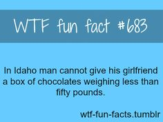 WTF Fun Facts is updated daily with interesting & funny random facts. New facts all day - every day! Wow Facts, Wtf Fun Facts, True Facts, Funny Facts, Crazy Facts, Random Facts, Random Stuff, Just Letting You Know, The More You Know