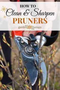 how to clean and sharpen pruners