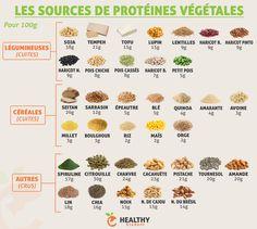 Les sources de protéines végétales