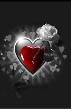 I Love You Images, Love Heart Images, Heart Pictures, I Love Heart, Beautiful Pictures, Beautiful Flowers Wallpapers, Beautiful Rose Flowers, Cute Wallpapers, Heart Wallpaper