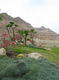 """Ein Gedi - Wikipedia, the free encyclopedia - """"The Botanical Garden at kibbutz Ein Gedi."""""""