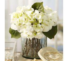 Faul Hydrangea arrangement
