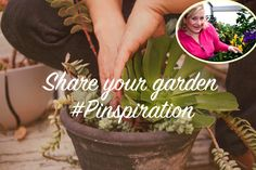 #Pinspiration Chat: Spring gardening with BG Garden, via the Official Pinterest Blog